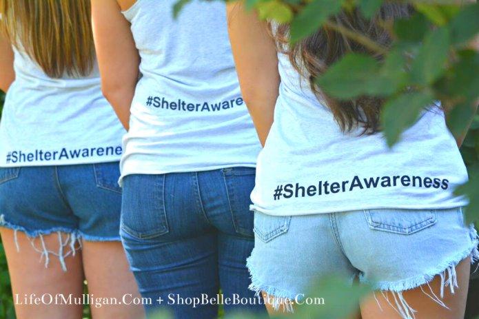 Shelter Awareness Back