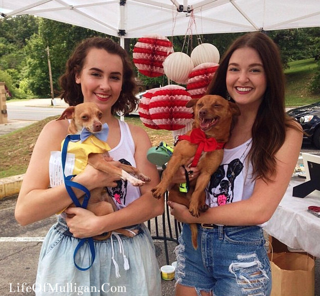 Two extremely cute workers holding two of the dogs up for adoption! LOOK HOW HAPPY THE DOGS LOOK!!!